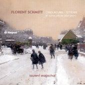 Schmitt: Crépuscules - Ombres by Laurent Wagschal