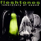 Laboratory Of Sound by The Fleshtones