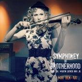 Symphony Of Brotherhood featuring Dr. Martin Luther King jr. by Miri Ben-Ari