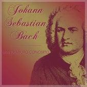Johann Sebastian Bach - Brandenburg Concerto by Das Große Klassik Orchester