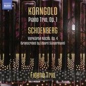 Korngold: Piano Trio - Schoenberg: Verklärte Nacht by Fidelio Trio