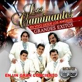 Grandes Exitos en Vivo by Los Caminantes