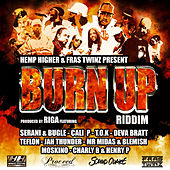 Burn up Riddim by Various Artists