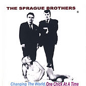 Changing The World, 1 Chick At A Time by Sprague Brothers
