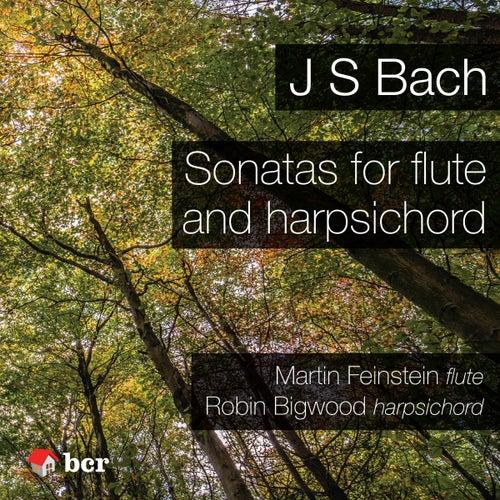 Sonatas for Flute and Harpsichord by Martin Feinstein