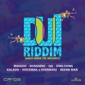 DUI Riddim von Various Artists
