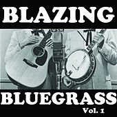 Blazing Bluegrass, Vol. 1 von Various Artists