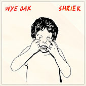 The Tower (Single) by Wye Oak