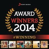 Award Winners 2014: #Winning by Various Artists