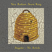 Singular, No Article by New Radiant Storm King