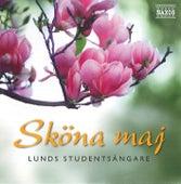 Sköna Maj by Lunds Studentsångare