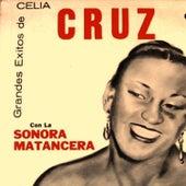 La Frutas y mi son Cubano by Celia Cruz