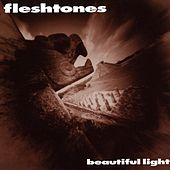 Beautiful Light by The Fleshtones