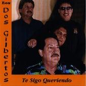 Te Sigo Queriendo by Los Dos Gilbertos