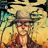 Calm & Collect Vol. 2 - EP by Anitek
