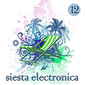 Siesta Electronica, Vol. 12 by Various Artists