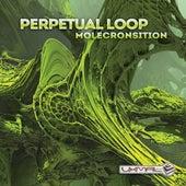 Molecronsition by Perpetual Loop