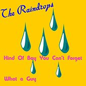 Kind of Boy You Can't Forget by The Raindrops