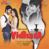 Vidhata Tere Khel Hain Nirale (Original Motion Picture Soundtrack) by Various Artists