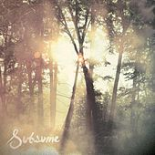 Subsume by Cloudkicker