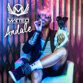 Andale by Matteo