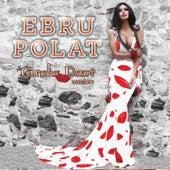 Günaha Davet Versiyon by Ebru Polat