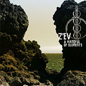 A Handful of Elements by Zev