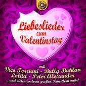 Liebeslieder zum Valentinstag by Various Artists
