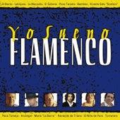 Yo Sueno Flamenco by Various Artists