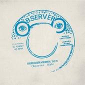 Sledgehammer Dub by Niney the Observer