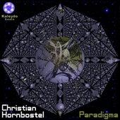 Paradigma by Christian Hornbostel