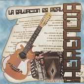 La Salvacion Es Real by Los Herederos Del Norte