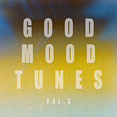 Good Mood Tunes, Vol. 3 by Various Artists