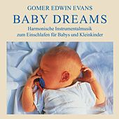 Baby Dreams: Instrumental Lullabies by Gomer Edwin Evans
