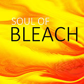 Soul Of Bleach by Spirit