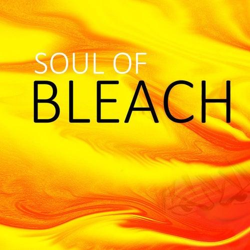 Soul Of Bleach by Spirit