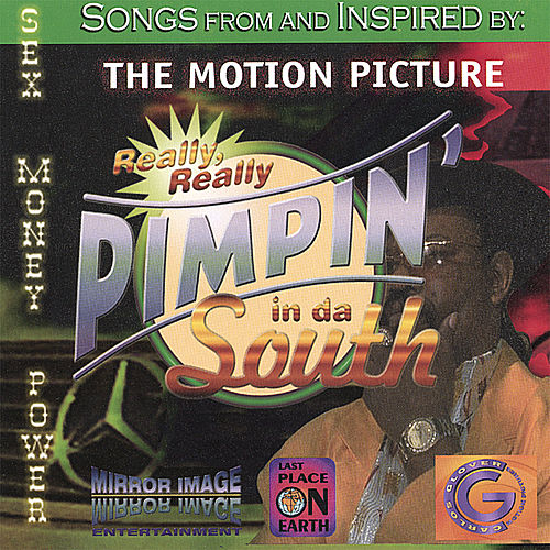 Really Really Pimpin In Da South by Various Artists