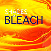 Shades of Bleach by Spirit