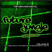 Future Jungle Selections Volume 1 - EP by Various Artists