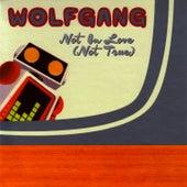 Not In Love (Not True) by Wolfgang