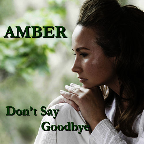 Don't Say Goodbye by Amber