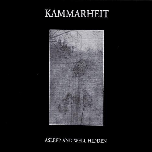 Asleep And Well Hidden by Kammarheit