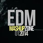 EDM Mashup Zone, Vol. 1 (Best Electronic Dance Music 2014) by D'Mixmasters