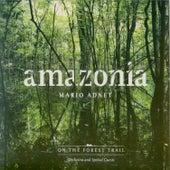 Amazonia by Mario Adnet