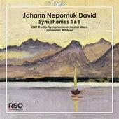 David: Symphonies Nos. 1 & 6 by ORF Radio Symphonieorchester Wien