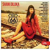 Road 66 von Shani Diluka