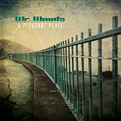 A Pleasant Place - EP by Mr. Moods