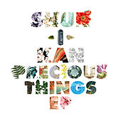 Precious Things EP by Shur-I-Kan
