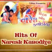 Hits of Naresh Kanodiya by Various Artists