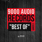 Best of 9000 Audio Records by Various Artists